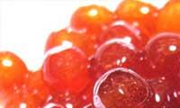イクラはロシア料理に利用される食材
